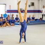Gymnastics Bermuda, November 8 2014-60