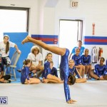 Gymnastics Bermuda, November 8 2014-62