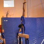 Gymnastics Bermuda, November 8 2014-7