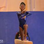 Gymnastics Bermuda, November 8 2014-9