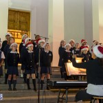 Hamilton Christmas Tree Lighting 2014 (12)