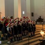 Hamilton Christmas Tree Lighting 2014 (21)