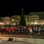 Hamilton Christmas Tree Lighting 2014 (47)