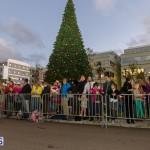 Hamilton Christmas Tree Lighting 2014 (6)