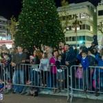 Hamilton Christmas Tree Lighting 2014 (66)