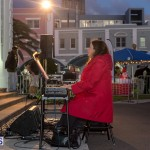 Hamilton Christmas Tree Lighting 2014 (7)