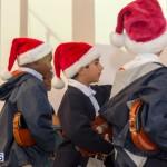 Hamilton Christmas Tree Lighting 2014 (8)