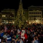 Hamilton Christmas Tree Lighting 2014 (80)