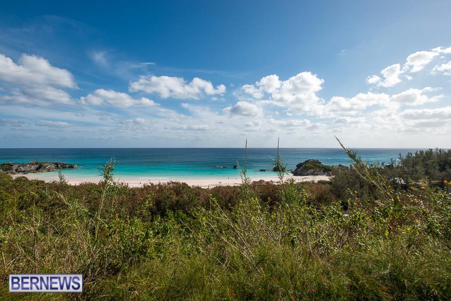 Horseshoe Bay Bermuda Generic