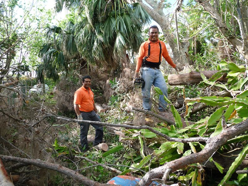 Sousa's employees at Somerset Long Bay nature reserve