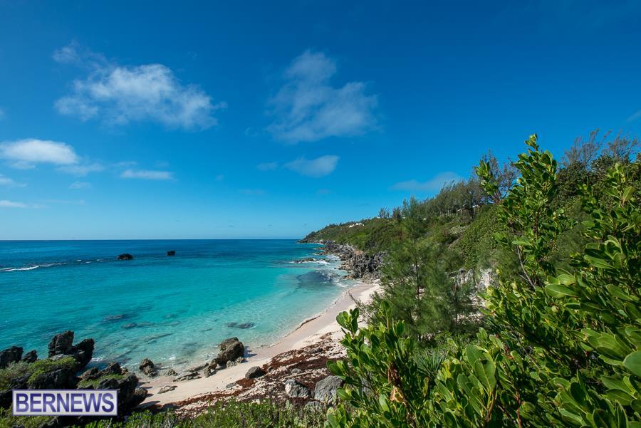 South shore Bermuda Generic