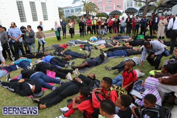 Bermuda die in Dec 2014 (9)