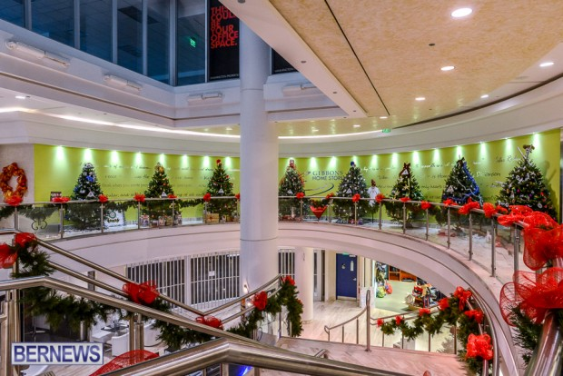 CHRISTMAS TREES IN MALL 2014 (17)
