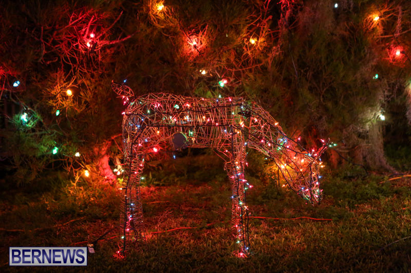 Christmas-Lights-Decorations-Bermuda-December-20-2014-112