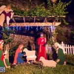 Christmas Lights Decorations Bermuda, December 20 2014-82