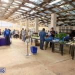 Farmers Market Bermuda, December 6 2014-1