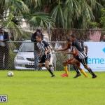 Friendship Semi Final Dandy Town PHC Bermuda, December 27 2014-7