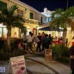 National Trust Walkabout Bermuda, December 5 2014-39