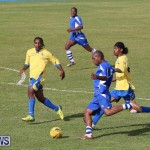 Shield Semi Final Football Bermuda, December 26 2014-19