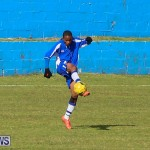 Shield Semi Final Football Bermuda, December 26 2014-3