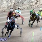 harness-racing-dec-2014-13