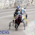harness-racing-dec-2014-8
