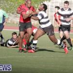 rugby-dec-2014-11