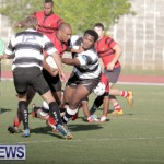 rugby-dec-2014-13