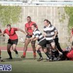 rugby-dec-2014-14