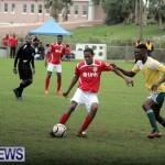 sports-dec-2014-12