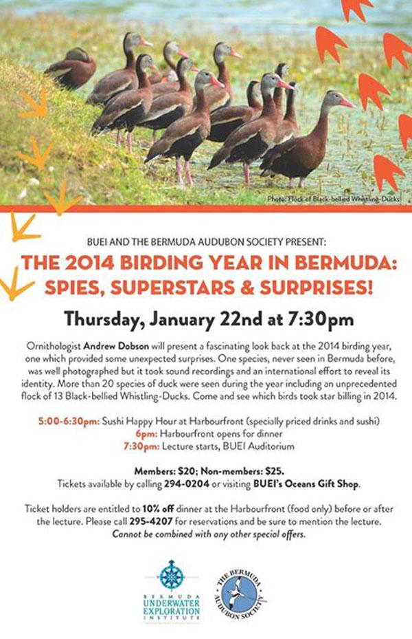 2014 Birding Year