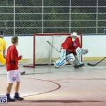 California Golden Seals vs Quebec Nordiques Bermuda Ball Hockey, January 21 2015-1