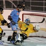 California Golden Seals vs Quebec Nordiques Bermuda Ball Hockey, January 21 2015-12
