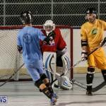 California Golden Seals vs Quebec Nordiques Bermuda Ball Hockey, January 21 2015-14