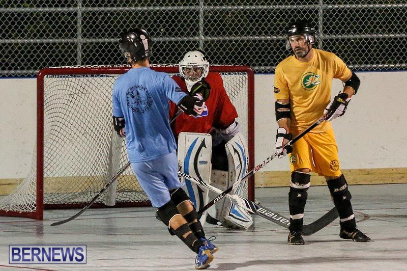 California-Golden-Seals-vs-Quebec-Nordiques-Bermuda-Ball-Hockey-January-21-2015-14