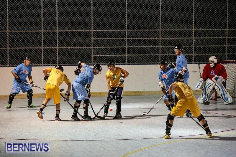 California-Golden-Seals-vs-Quebec-Nordiques-Bermuda-Ball-Hockey-January-21-2015-16