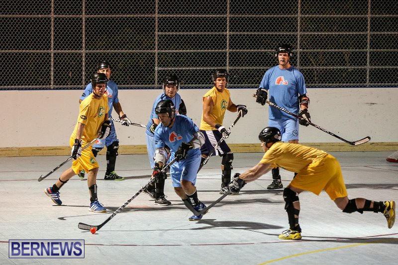 California-Golden-Seals-vs-Quebec-Nordiques-Bermuda-Ball-Hockey-January-21-2015-18