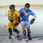 California Golden Seals vs Quebec Nordiques Bermuda Ball Hockey, January 21 2015-19