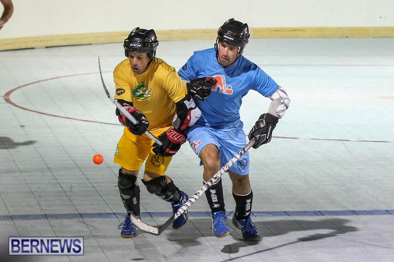 California-Golden-Seals-vs-Quebec-Nordiques-Bermuda-Ball-Hockey-January-21-2015-19