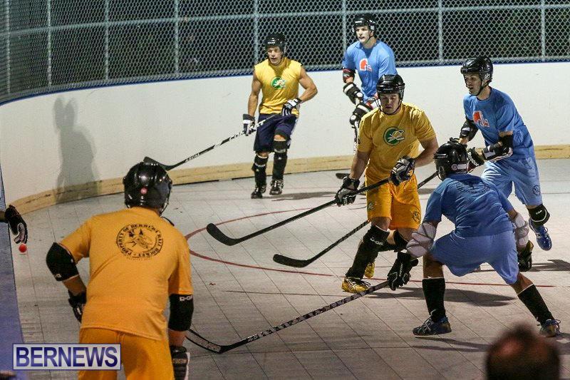 California-Golden-Seals-vs-Quebec-Nordiques-Bermuda-Ball-Hockey-January-21-2015-2