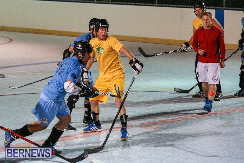 California-Golden-Seals-vs-Quebec-Nordiques-Bermuda-Ball-Hockey-January-21-2015-26