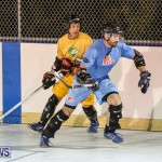 California Golden Seals vs Quebec Nordiques Bermuda Ball Hockey, January 21 2015-27