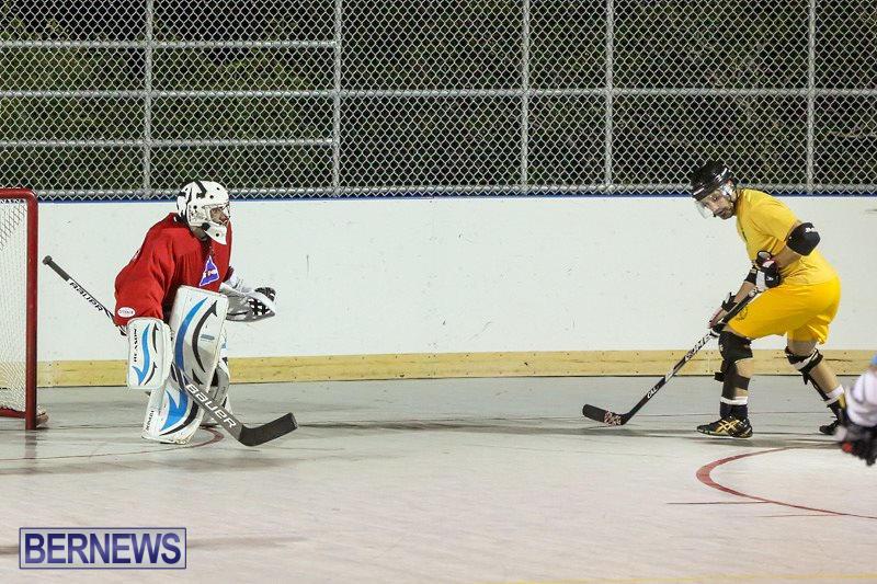 California-Golden-Seals-vs-Quebec-Nordiques-Bermuda-Ball-Hockey-January-21-2015-29