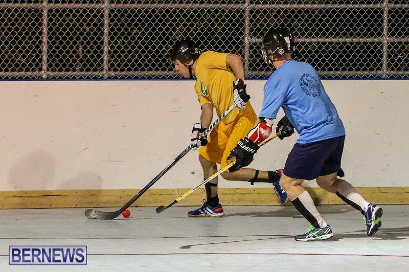 California-Golden-Seals-vs-Quebec-Nordiques-Bermuda-Ball-Hockey-January-21-2015-3