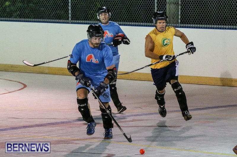 California-Golden-Seals-vs-Quebec-Nordiques-Bermuda-Ball-Hockey-January-21-2015-30