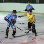 California Golden Seals vs Quebec Nordiques Bermuda Ball Hockey, January 21 2015-31