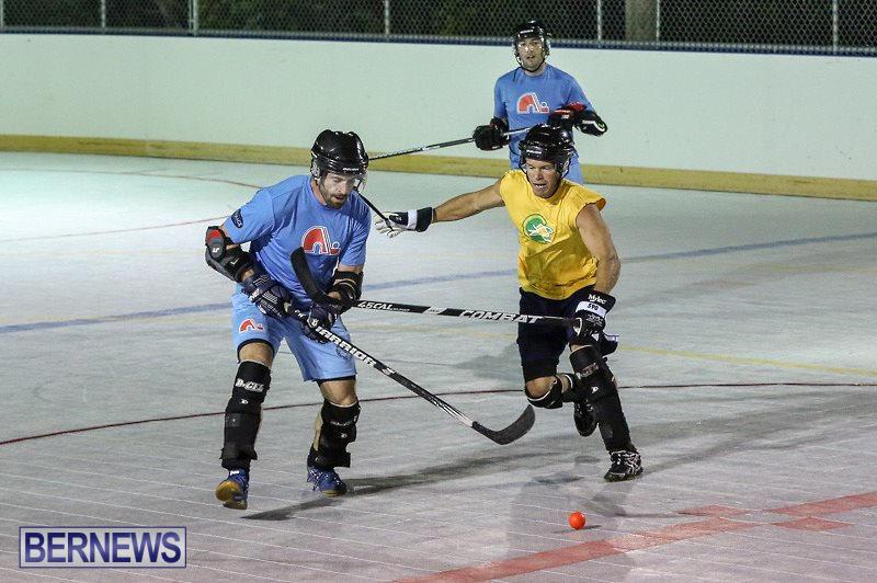 California-Golden-Seals-vs-Quebec-Nordiques-Bermuda-Ball-Hockey-January-21-2015-31
