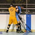 California Golden Seals vs Quebec Nordiques Bermuda Ball Hockey, January 21 2015-32