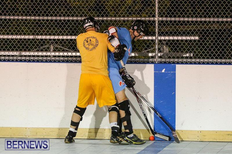 California-Golden-Seals-vs-Quebec-Nordiques-Bermuda-Ball-Hockey-January-21-2015-32