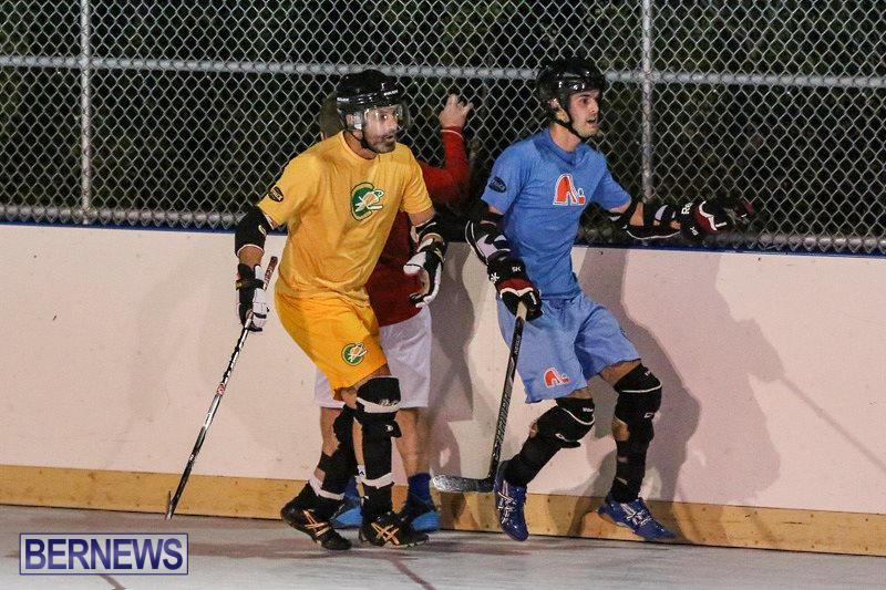California-Golden-Seals-vs-Quebec-Nordiques-Bermuda-Ball-Hockey-January-21-2015-35